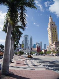 Miami Apartment News