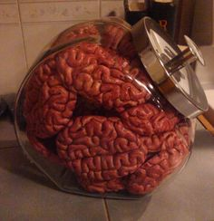 Brains from the dollar store....