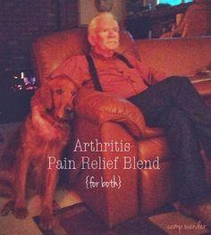 Arthritis Pain Relief Blend {birch free}