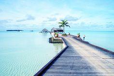 Maldives?