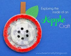 Activity of the Week: The Inside of an Apple Craft - pinned by @PediaStaff – Please Visit  ht.ly/63sNt for all our ped therapy, school & special ed pins