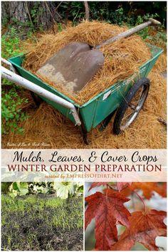 Winter Garden Prep: Mulch, Leaves, & Cover Crops | empressofdirt.net