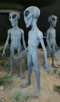 Roswell New Mexico.