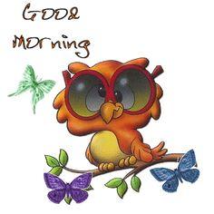 good morning owl