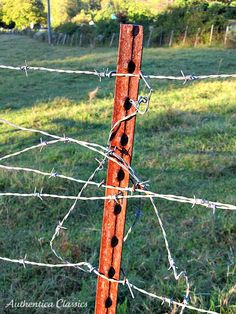RUST and Wire