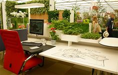 Desk and plants
