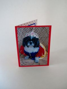 Shih Tzu Blank Card Snow White Card Dog Photo Card by Lillyzcardz, $4.00