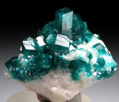 Dioptase from Tsumeb, Namibia / Mineral Friends <3