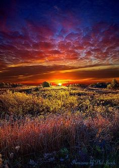 There are 3 unique things about Phil Koch images: 1) every image is photographed in Wisconsin, 2) every image is a vertical, and 3) every image has the horizon line almost dead center -- breaking a major rule of composition (but it works great)