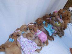 Boy, Girl, Boy, Girl, Boy, Girl, Boy Girl, Girl, Girl, Pile.