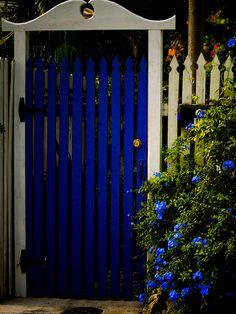 interior design, blue garden, blue doors, interior garden, cobalt blue, garden gates, garden design ideas, key west, modern garden