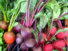"""""""Foods are whole for a reason"""" –Sarah Britton of My New Roots. Sarah, we couldn't of said it better ourselves! Learn how to cook the all parts of the beet with Sarah."""