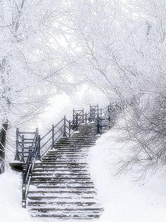 stairway, heaven, snow, winter wonderland, white, path, place, winter scenes, walk
