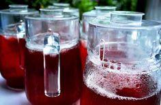 Recetas de Bebidas de Guatemala: Rosa de Jamaica
