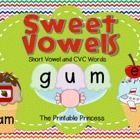 Ice cream themed activities to teach short vowels and CVC words. Includes 16 CVC & Short Vowel recording sheets/worksheets.