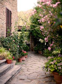Gaudy Gardens