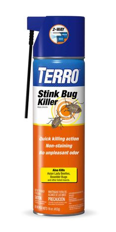TERRO Stink Bug Killer | Splash Magazines | Los Angeles