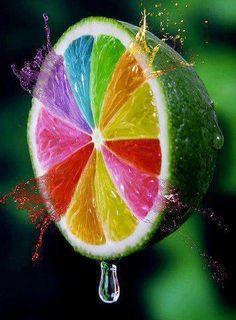Gay Lemon