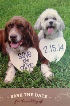 2 Save the Date Engagement Heart Signs by yourethatgirldesigns, $31.95