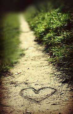 stunning photography, pathway, simple photography ideas, brides, photographi idea, wedding pictures, dirt roads, walk, the road