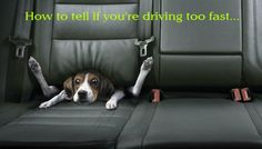 How to tell if you're driving too fast...