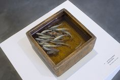 This Is A Painting! 3D Fish Painted in Layers of Resin by Riusuke Fukahori