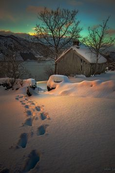 Tracks in the snow in Norway