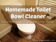 "Homemade Toilet Bowl Cleaner - Plus 4 More Ways to Go Green While ""Going"" 