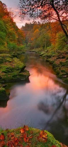 The Strid narrows of the River Wharfe at Bolton Abbey in the Yorkshire Dales, United Kingdom.!