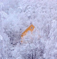 seas, beauti place, winter wonderland, frost, cabins, finland, yellow houses, oranges, homes