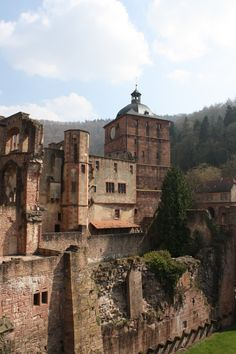 Heidelberg Germany - this was an amazing site! So much history.