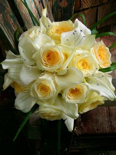 White with a whisper of yellow~ callas and creme de creme roses~Stems Flower Shop