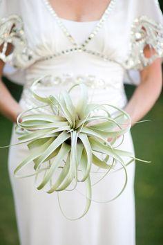 air plant bouquet.