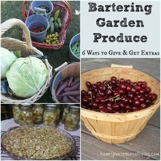Simple ways to waste not, want not by bartering garden produce to avoid spoilage, build community, and share in the bounties of others in your area.