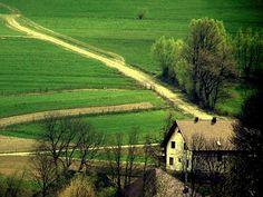 country roads, take me home