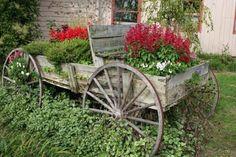 Raised garden bed.