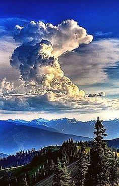 Thunderhead - Hurricane Ridge, Washington