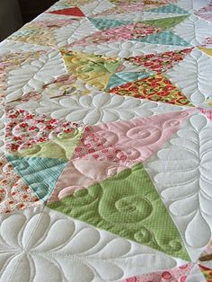 Gorgeous quilting...some day I'll have a long-arm machine and I hope I'll be able to do that!