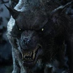 The Hobbit: An Unexpected Journey Photo with A Hungry Warg Hunting Down Bilbo Baggins - This evil wolf-like creature from J.R.R. Tolkien's tome makes his first appearance as a fire scorches through Middle Earth.