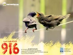 916 Movie , 916 Malayalam Movie by M Mohanan , Asif Ali , Anoop Menon , Mukesh Malavika