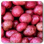 Organic Red Norland Potato