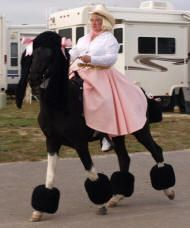 poodle horse costume. must do this on one of the horses for Halloween!!!!
