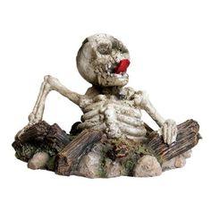 Amazon.com: Zombie Skeleton: Pet Supplies