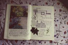art journal, natur journal, photo journal, nature journal