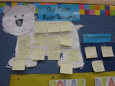 Arctic Animals Unit... Schema about Polar Bears Anchor... click on the picture for a polar bear graphic organizer too! :)