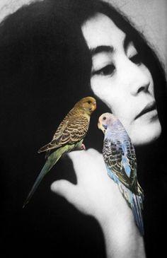 Yoko Ono by Emilie Halpern.