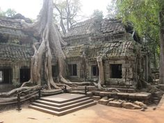 Ta Prohm in Siem Reap, Cambodia.  One of the trippiest places I've ever been