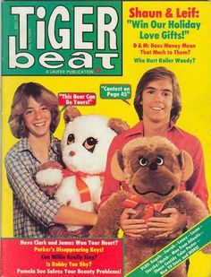 Tiger beat: I LOVED this as a young teen. Had Shaun Cassidy  Andy Gibb posters on my wall. Just looking at the cover takes me down memory lane.......