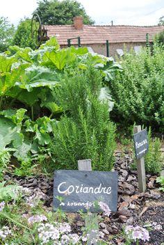 le petit, jardinquatr saison, outdoor live, grow food, petit pauliat, edibl garden