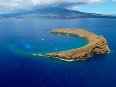 Mahana Nai'a: Molokini Crater Snorkel - Maui Adventure Group